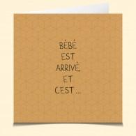 Naissance-Surprise bis